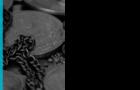 PANEL:     BLOCKCHAIN image
